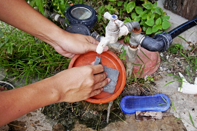 Cleaning Plant Dish Ways to Prepare Your Home for the Rainy Season
