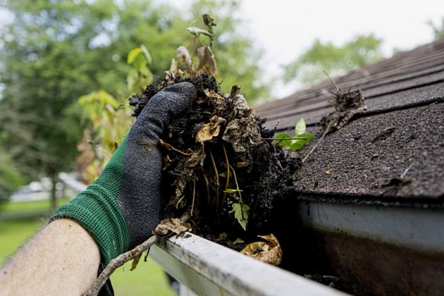 Cleaning Roof Gutter Ways to Prepare Your Home for the Rainy Season