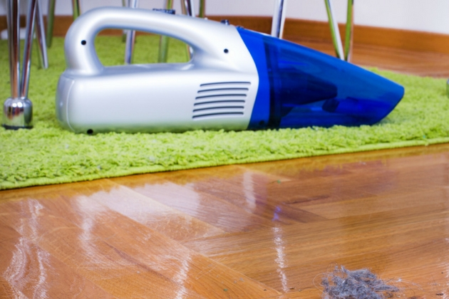 Vacuum cleaner Christmas Gift Ideas for Owners of Different Types of Homes