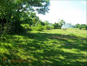 Lot For Sale in Batangas - Buy Land | Lamudi