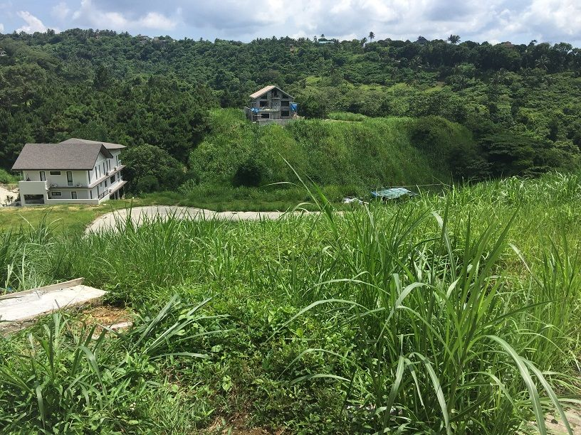 Rush Lot For Sale In Tagaytay Crosswinds