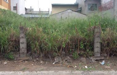 Lot For Sale In San Pedro Buy Land Lamudi