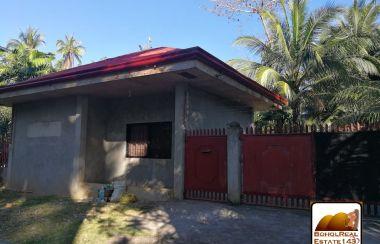 Sensational House And Lot For Sale In Bohol Lamudi Download Free Architecture Designs Ponolprimenicaraguapropertycom