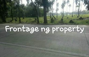 Lot For Sale in Palawan - Buy Land | Lamudi