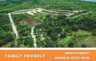 Lot For Sale in Bohol - Buy Land | Lamudi