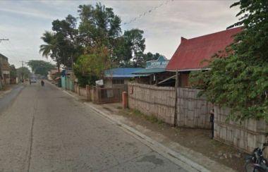 Properties For Sale in Lambagoan, Sibuco - Buy Real Estate