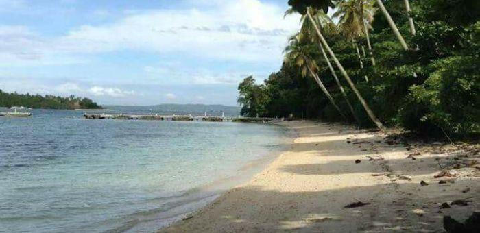 Property For Sale In Island Of Garden Samal Samal Davao