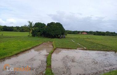Real Estate For Sale In Zambales Lamudi