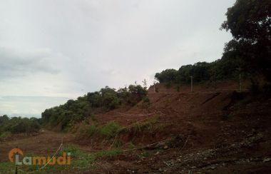 Property For Sale In Bagac Lamudi